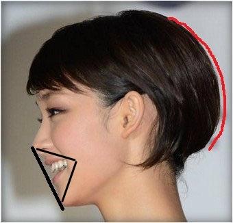 剛力さんの横顔を参考に凹凸を見てみると、鼻と顎の凸面2に対して、口が凹面1の役割を見事に果たしています。