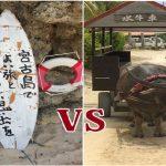 宮古島と石垣島の違いを比較。旅行ならどっちがいいの問題
